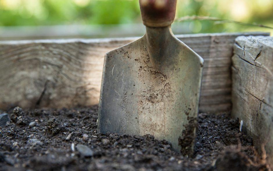 Les outils indispensables pour jardiner efficacement !