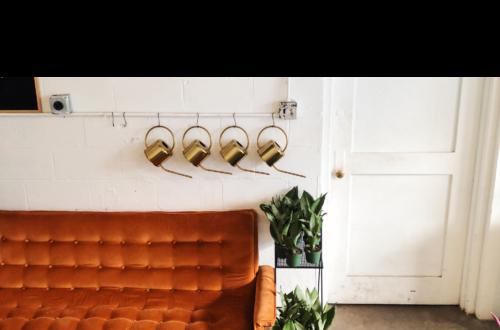 salon-canapé-trois-places-plantes
